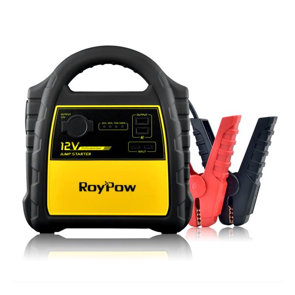 RoyPow J301 (+ Power Bank в подарок!)