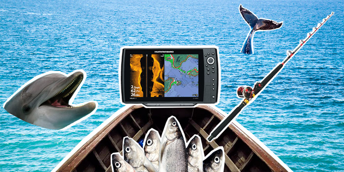 Лучшие эхолоты 2019 года для рыбалки с лодки пвх и берега: рейтинг эхолотов для зимней рыбалки, ловли сома на квок, троллинга